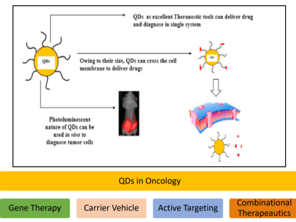 Theranostic Application of Solid Lipid Nanoparticles Decorated Quantum Dots in Breast Cancer Therapy